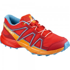 Scarpa Salomon Speedcross J