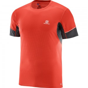 Salomon Agile SS T-shirt M