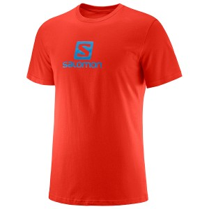 Salomon T-shirt Coton Logo