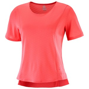 Salomon Elevate Areo T-Shirt W