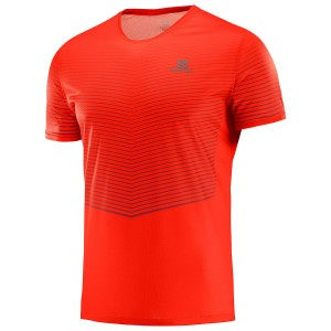 Salomon Sense T-Shirt M