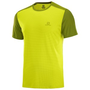 Salomon Stroll T-Shirt M